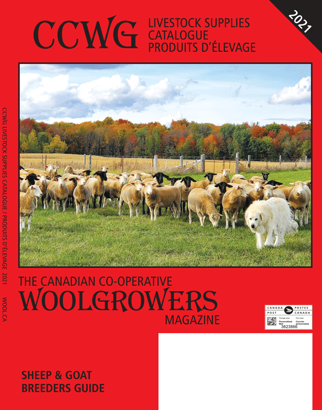 2021 CCWG cover