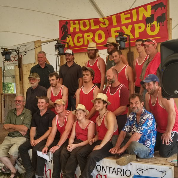 2019 Holstein Agro Expo shearing competition