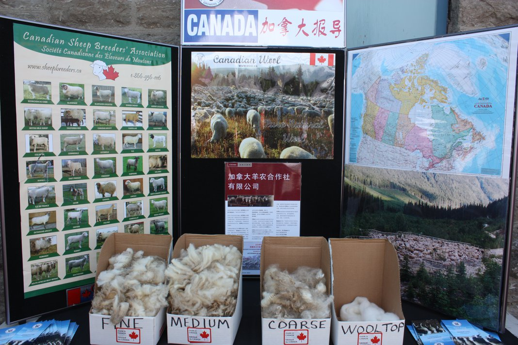 Canadian wool display  at Lambs Down Park Festival 2018